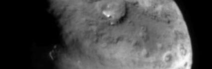 新彗星の名前はカレーかシチューかフライドポテトに