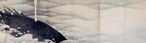 日本、オージー鯨肉の関税撤廃を検討