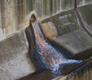 写真=下水プールの出口