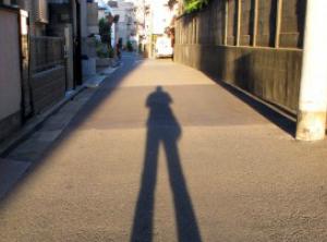 写真=東京の影は35万6724smと圧倒的に濃い